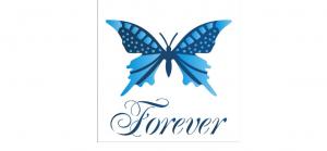 stensil 14χ14 Butterfly Forever 1371